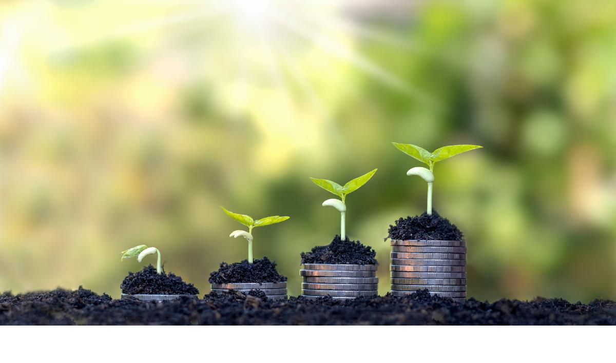 Bilancio di Sostenibilità Grifal 2019